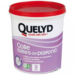 QUELYD COLLE DALLE PLAFOND 1KG