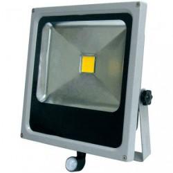 PROJECTEUR LED 30W COMPACT +DETEC.GRIS