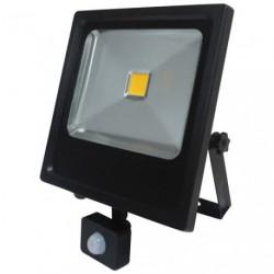 PROJECTEUR LED 30W COMPACT +DETEC.NOIR