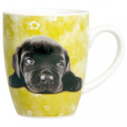 MUG MINI DOGS ASSORTIS NOVASTYL 40CL
