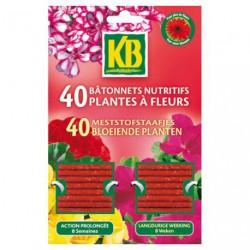 BATONNETS PLANTES FLEURS KB X40   /NCA