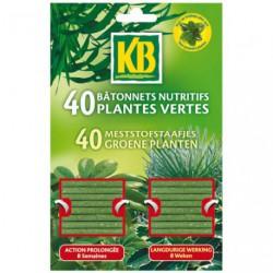 BATONNETS PLANTES VERTES KB X40   /NCA