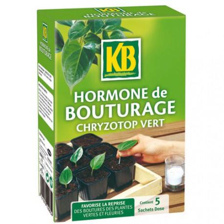hormone de bouturage kb 5x5g maison de la droguerie. Black Bedroom Furniture Sets. Home Design Ideas