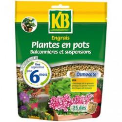 ENGRAIS OSMOCOTE PLANT POT 25DES  /NCA