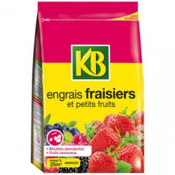 ENGRAIS FRAISIER PETIT FRUITS 800G/NCA