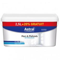 MUR/PLAF.MAT MONO. 2.5L+20%GR.BLANC
