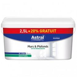 MUR/PLAF.SAT.MONO. 2.5L+20%GR.BLANC