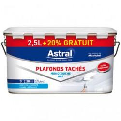 PLAFOND TACHE MONO. MAT 2.5L+20%GR.BLC