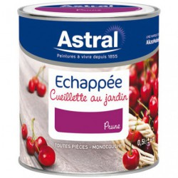 ECHAPPEE SAT.0.5L PRUNE