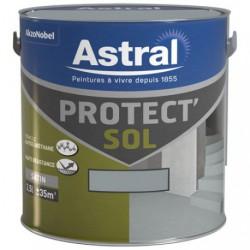 PROTECT SOL SAT. 2.5L GRIS CIME-ORAGEU