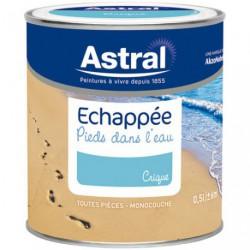 ECHAPPEE SAT.0.5L CRIQUE