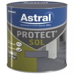 PROTECT SOL SAT. 0.5L GRIS MINE-MINERA