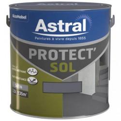 PROTECT SOL SAT. 2.5L GRIS MINE-MINERA