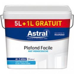 PLAFOND MAT MONO. 5L+1L GR.BLANC