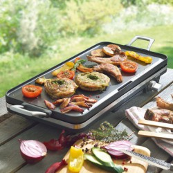 PLANCHA 1600W POWER ZONE 1900W 50X22CM