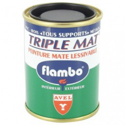 TRIPLE MAT PEINT.FLAMBO 100ML BLANC