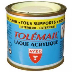 PEINTURE ACRYLIQU TOLEM. 50ML  JAUNE