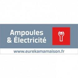 PANNEAU FAMILLE AMPOULES ELECT.65X25