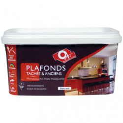 PEINTURE MUR/PLAFOND TACHES 2.5L BLANC